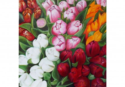 Flore provencale